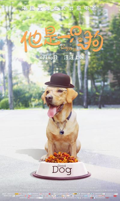 《他是一只狗》定档6.29 首部爱犬治愈系电影 一场宠物化身暖男的奇幻冒险